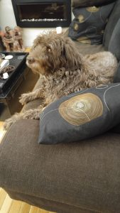 """Never """"off-duty"""" but relaxing on the sofa - while still keeping a watchful eye on Mom."""