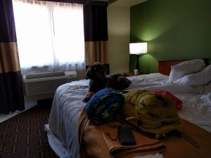 Siean chilling at one more hotel waiting for Mom & Dad to finish packing up before another long day of driving.