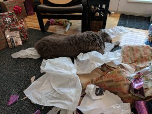 Siena, after opening her Christmas presents.